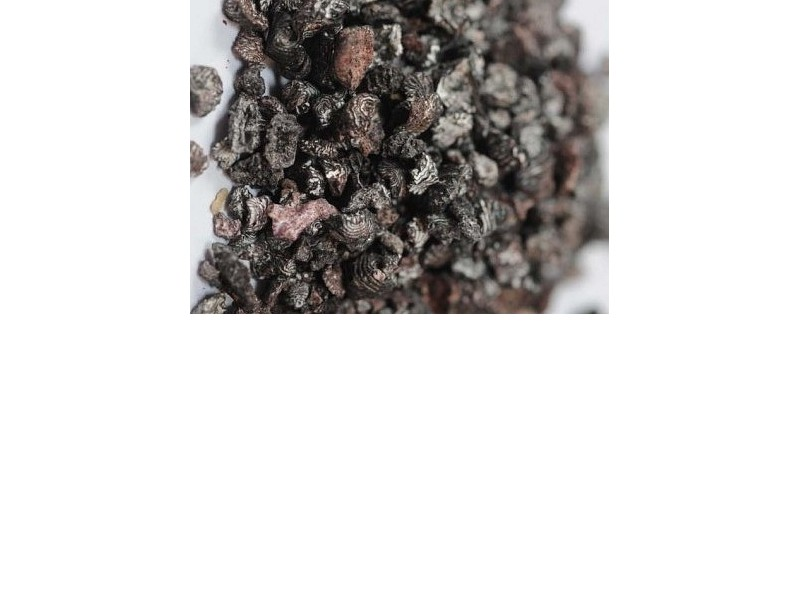COCHINEAL (Coccus Cacti) 50 g